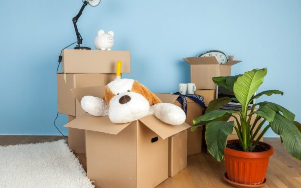 Choosing the Right Boxes for Your Packing Needs